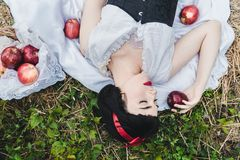 Snow White is laying in the floor, surrounded by red apples. She seems to be in a profound sleep.  royalty free stock image