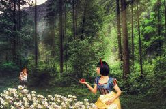Snow White in a mysterious forest holds an apple in her hand. Artistic processing.  stock photo