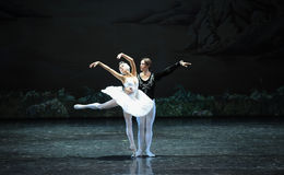 Snow white and Prince Charming-The last scene of Swan Lake-ballet Swan Lake Stock Photography