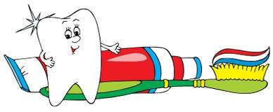 Snow-white tooth stock illustration