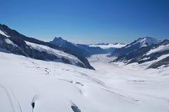 Snow Wilderness Stock Photos