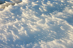 Snow and wind Stock Image