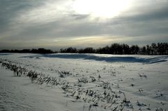 Snow is wind and sun. Snow and wind is in steppe of Kazakhstan Royalty Free Stock Photos