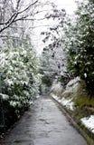 Snow winter day stock photos