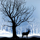 Snow winter forest landscape with deers. Abstract  illustration of winter forest. Stock Photo