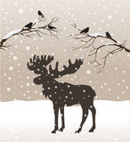 Snow winter forest landscape with moose and birds Stock Images