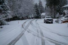 Snow, Winter, Freezing, Tree stock images
