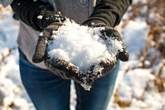 Snow in winter gloves Royalty Free Stock Photography