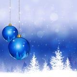 Snow Winter Holiday Royalty Free Stock Photos