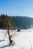 Snow winter landscape Stock Photos