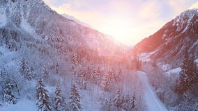Snow winter landscape sunset dusk forest woods trees stock video