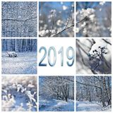 2019, snow and winter landscapes greeting card. 2019, snow and winter landscapes square greeting card stock photos