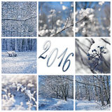 2016, snow and winter landscapes greeting card Stock Images