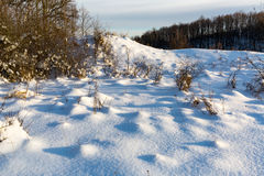 Snow on winter meadow Stock Photo