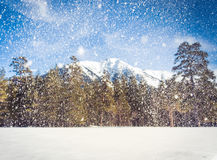 Snow winter mountain Stock Images