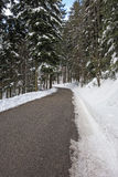 Snow winter road in forest Stock Photos