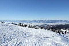 Snow winter scene on Kopaonik  Stock Photo