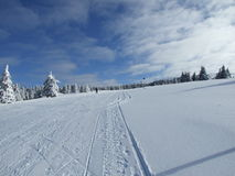 Snow winter scene Kopaonik mountain Royalty Free Stock Photography