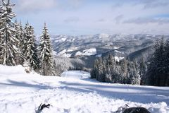 Snow winter Royalty Free Stock Images