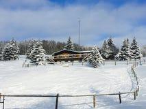Snow, Winter, Sky, Tree royalty free stock photos