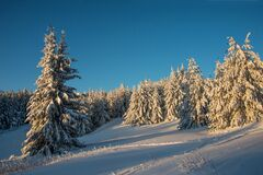 Snow Winter With Sunrise Light In A Mountain Royalty Free Stock Images