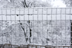Snow wire fence Royalty Free Stock Photography