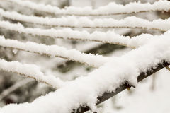 Snow on the wires Royalty Free Stock Photo