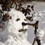 Snow woman Royalty Free Stock Photo