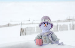 Snow woman in the snow. A whimsical snow woman in purple, enjoys an outing in the snow Royalty Free Stock Photo