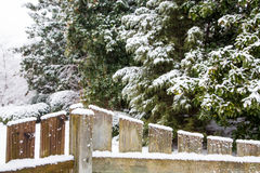 Snow of Wood Fence with Evergreens in Background Royalty Free Stock Photography
