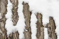 Snow on wood Royalty Free Stock Image