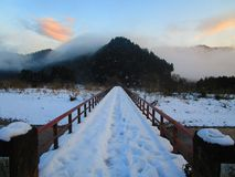 Snoway lizenzfreie stockfotografie