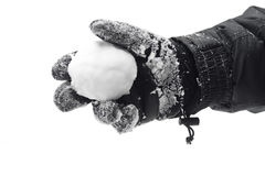 snowball руки Стоковое Фото