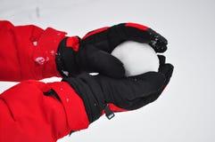 snowball Zdjęcie Royalty Free