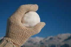 Snowball Стоковая Фотография
