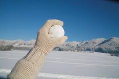 snowball Imagenes de archivo