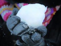 snowball Stockfoto