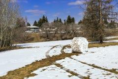 snowball Imagen de archivo
