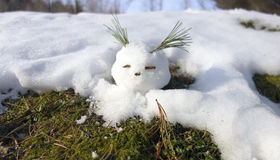 Snowball comes alive Royalty Free Stock Image