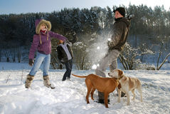 Snowball fight. Three young people have a snowball fight stock photo