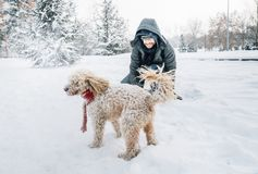 Snowball fight fun with pet and his owner in the snow. Winter holiday emotion. Cute puddle dog and man playing and running in the forest. Film filter image royalty free stock photography