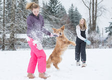 Snowball fight Royalty Free Stock Image