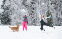 Snowball fight in winter Stock Image