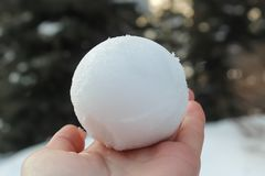 Snowball lies on the hand stock image