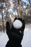 Snowball throwing royalty free stock photos