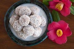 Snowball trufle czekoladowa i kokosowa polewa Obraz Royalty Free