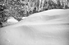 一snowbank 免版税库存照片