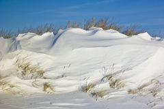 Snowbank Royalty Free Stock Image