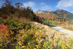 Snowbasin in autumn Stock Photography