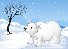 A snowbear walking Royalty Free Stock Photo